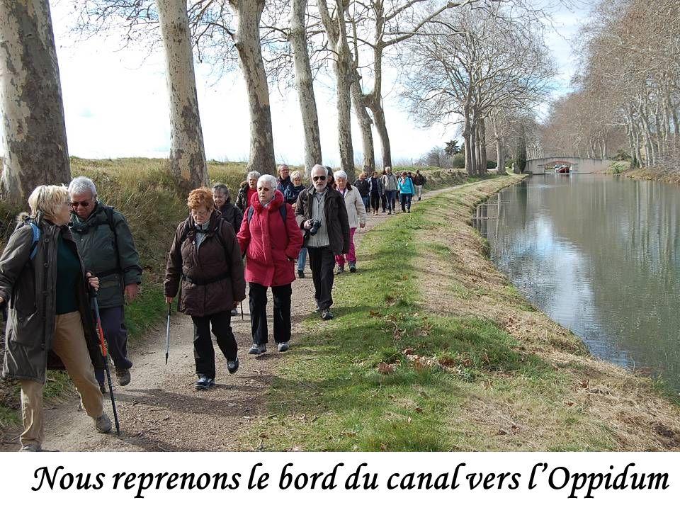 Nous reprenons le bord du canal vers lOppidum