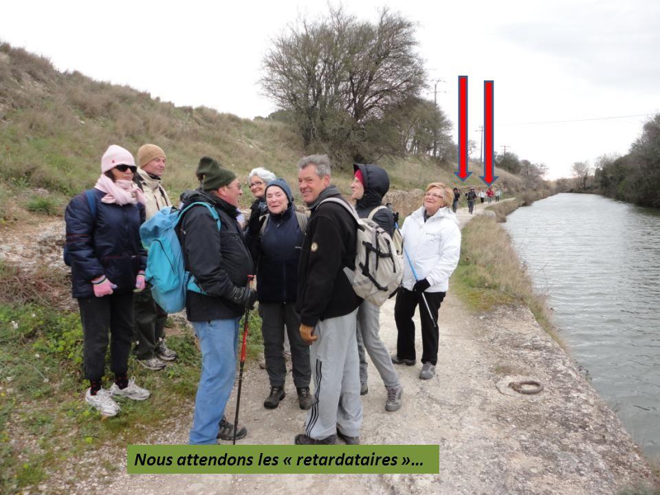 Ballade sur le Canal, pas de problème… contactez… ISATIS