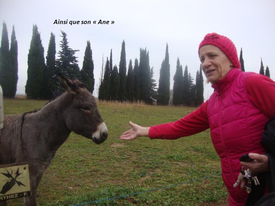 Les « toutous » à Jean Claude