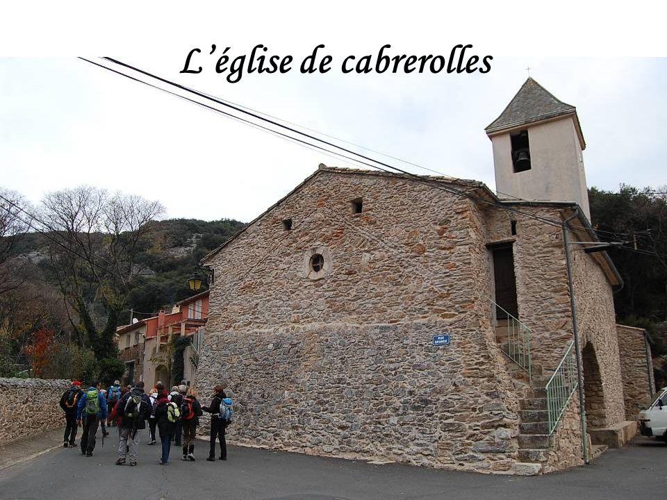 29 Cabris pour cette rando depuis Cabrerolles en passant en dessous du Pic de la Coquillade