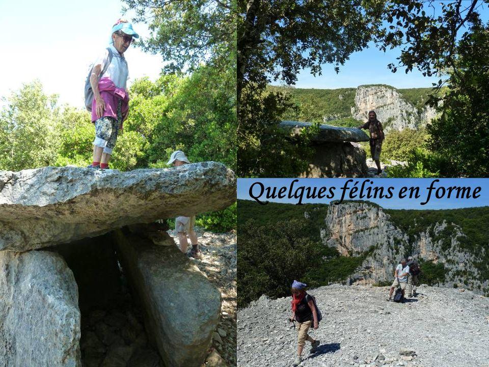 4 ème jour balade au dolmen de Chanet