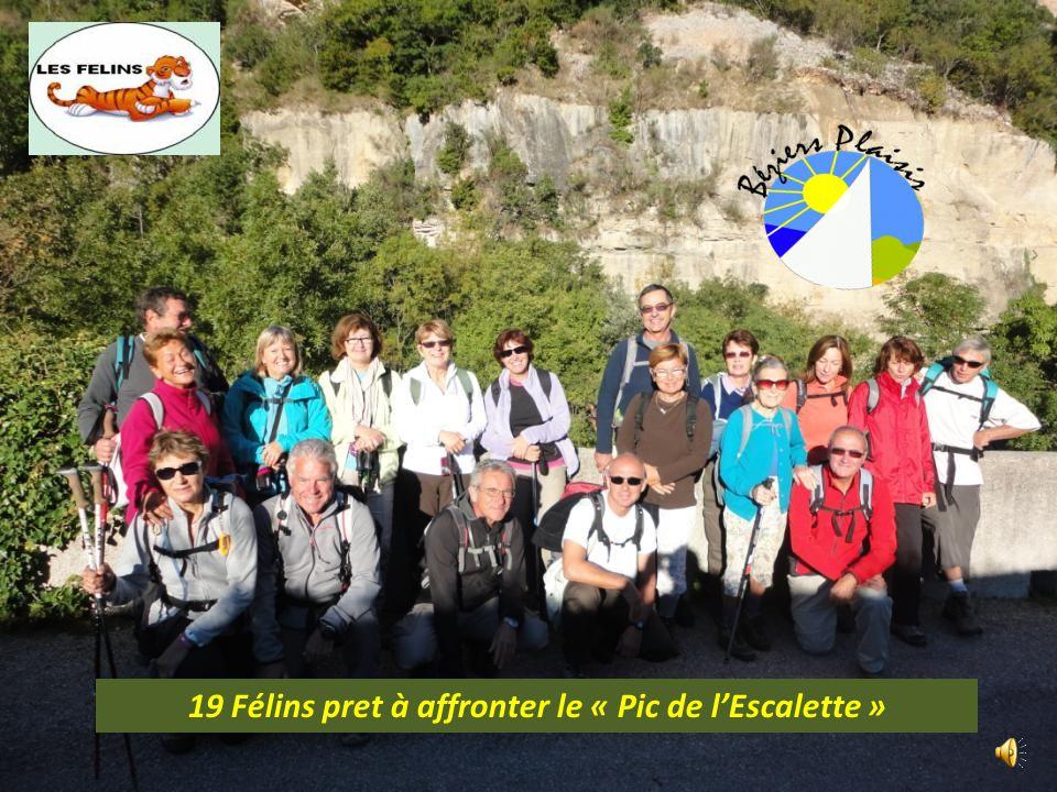 19 Félins pret à affronter le « Pic de lEscalette »
