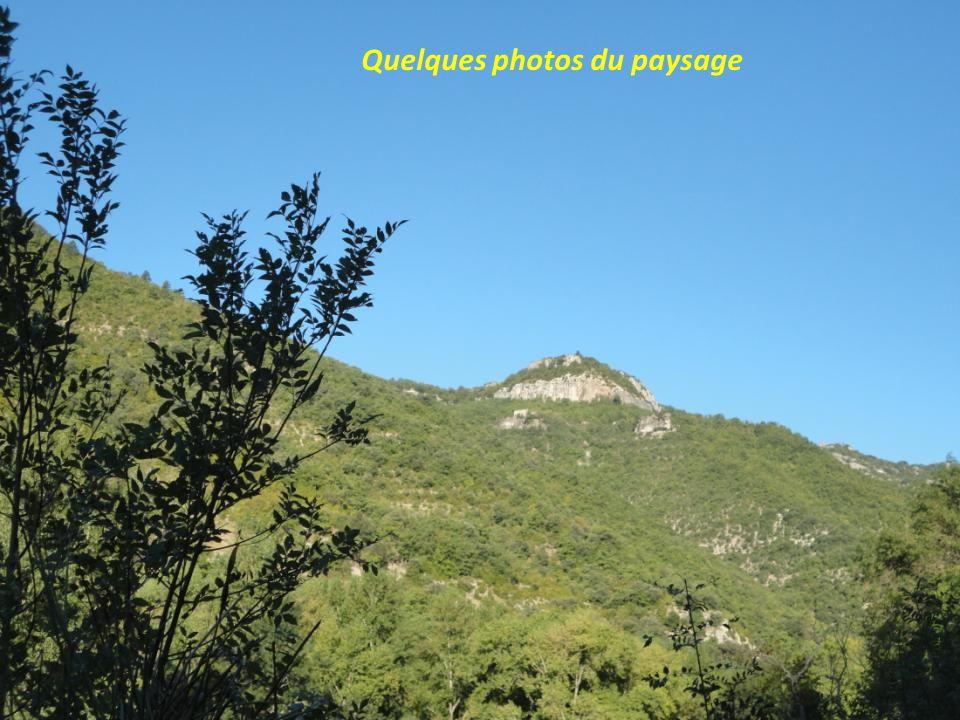 Quelques photos du paysage