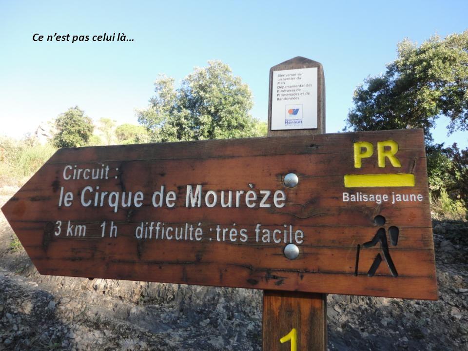 Jeudi 7 Novembre «Découverte de lAnse de Mourèze »