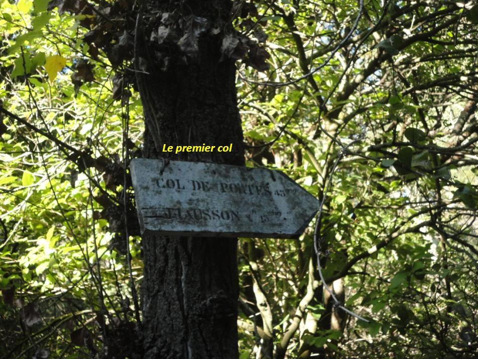 Le jardin de lEglise de Mourèze
