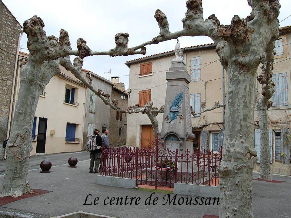 Un circuit regroupan t les différentes balades autour de Moussan