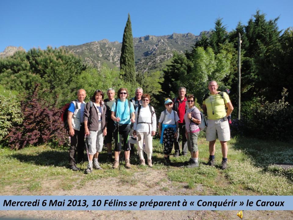 Mercredi 6 Mai 2013, 10 Félins se préparent à « Conquérir » le Caroux