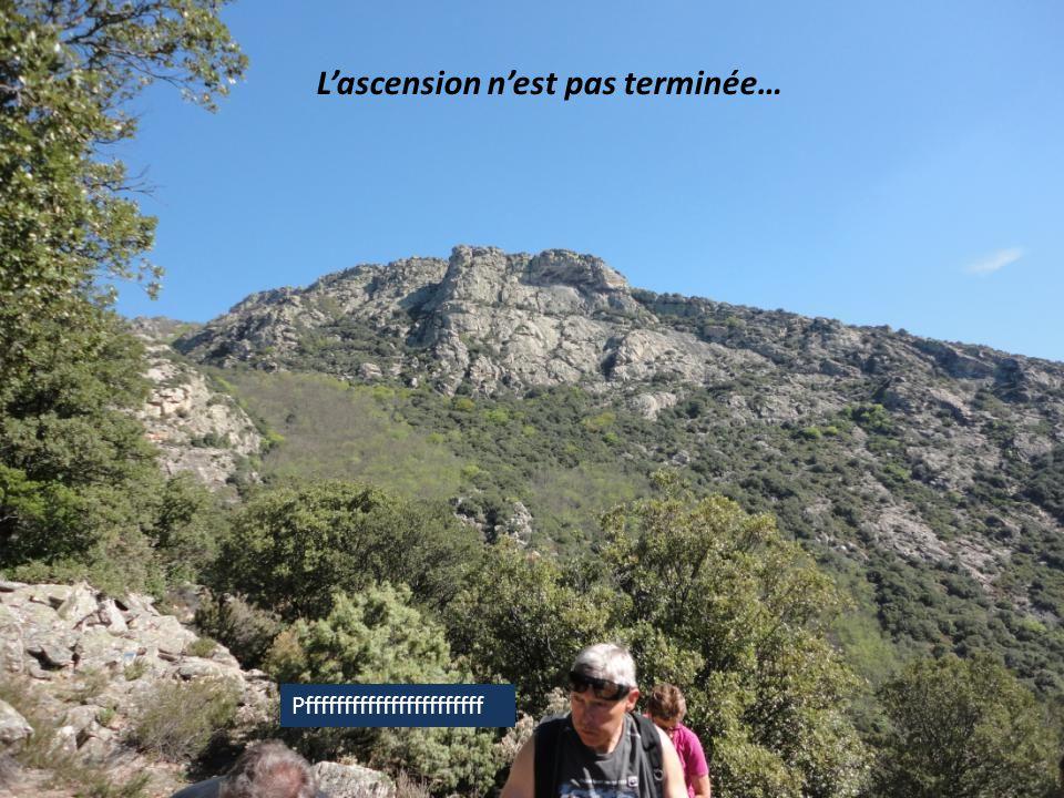Arrivée au Col de la Pomaréde, 2éme pause…
