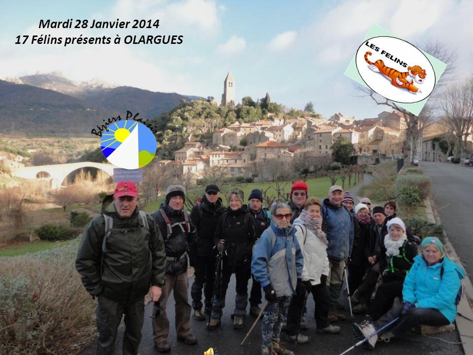 Mardi 28 Janvier 2014 17 Félins présents à OLARGUES
