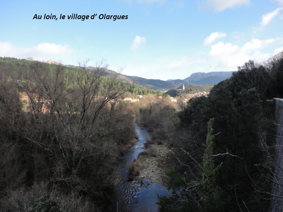 Au loin, le village d Olargues