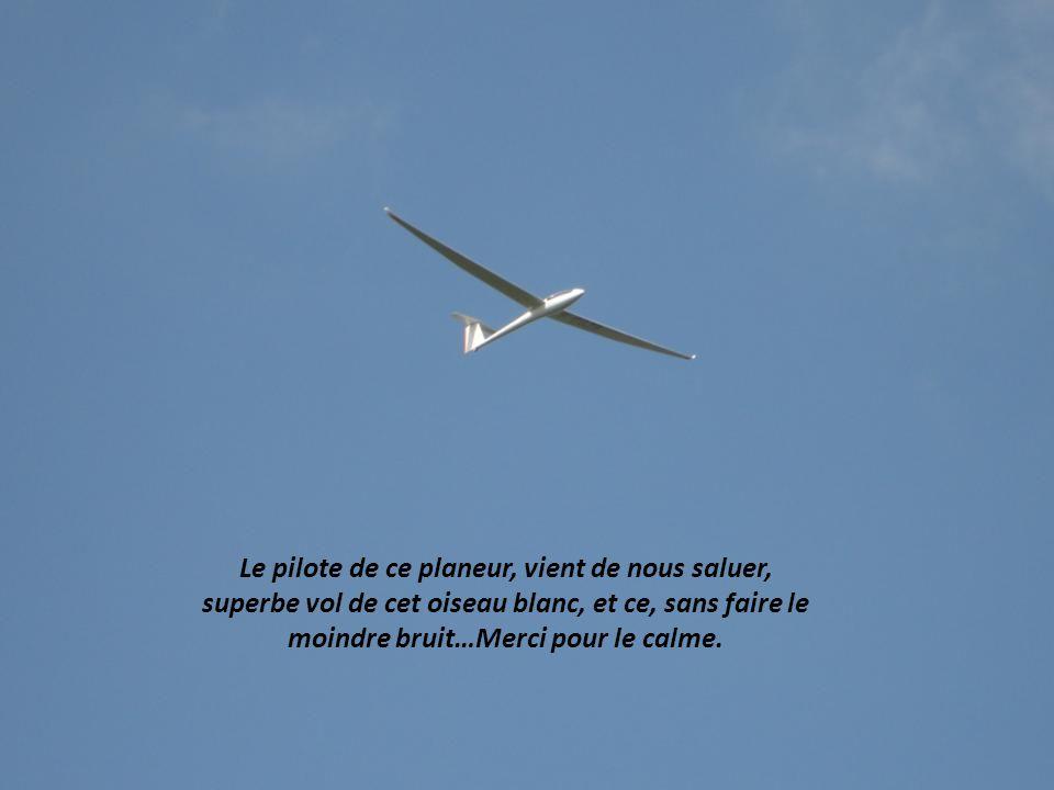 Attention, les Félins, pas de parapet derrière vous… Sinon 3 secondes pour apprendre à voler…