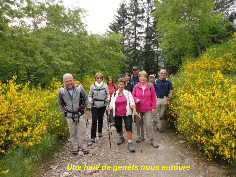 Retour vers Saint Gervais