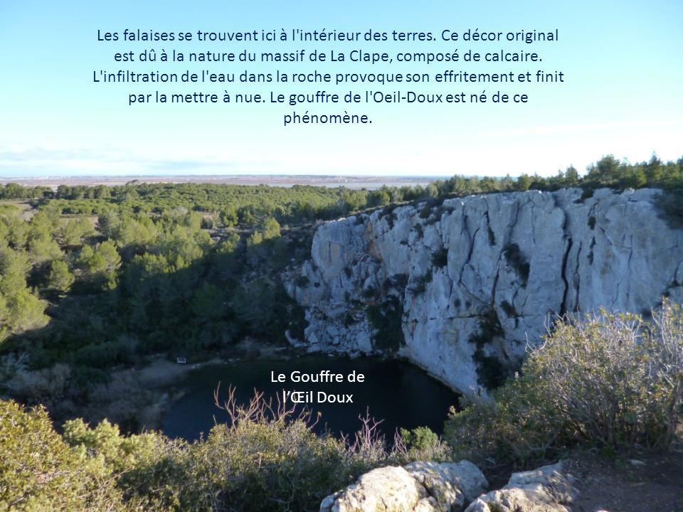 A deux pas de Saint-Pierre et du littoral, le massif de la Clape offre un vrai dépaysement avec ses combes forestières, ses crêtes dénudées et ses vastes panoramas sur la mer.