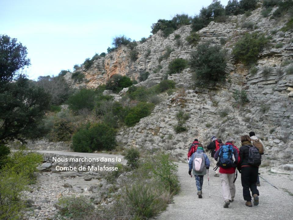 9 Félins bravent le froid ce lundi 10 Décembre 2012 pour partager cette randonnée LE ROC DE LA VIGNE SAINT-GUILHEM-LE-DESERT