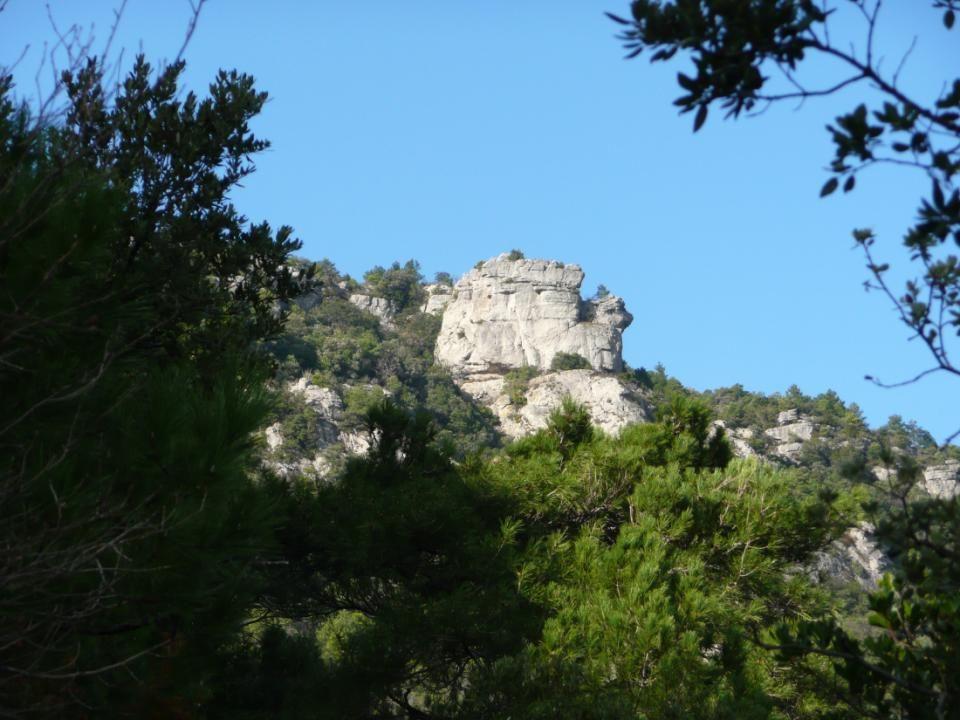 Dans les Monts de St Guilhem la végétation y est très belle, typiquement méditerranéenne, et les falaises calcaires donnent un petit air montagnard à