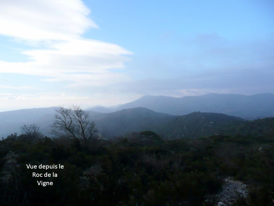 Nous voilà au sommet du Roc de la Vigne (709 m). Le vent souffle très fort et il commence à neigeoter