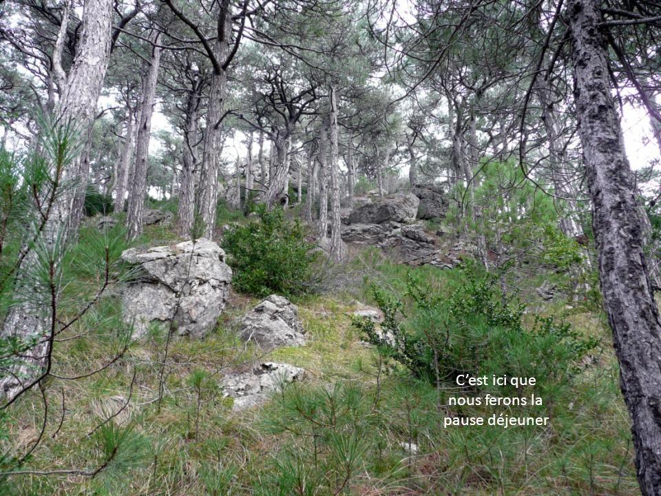 Vue depuis le Roc de la Vigne