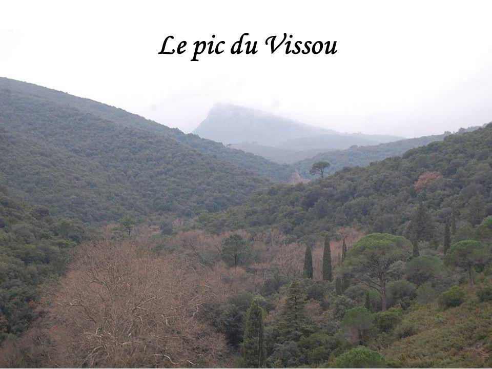 Vue sur Clermont lHérault