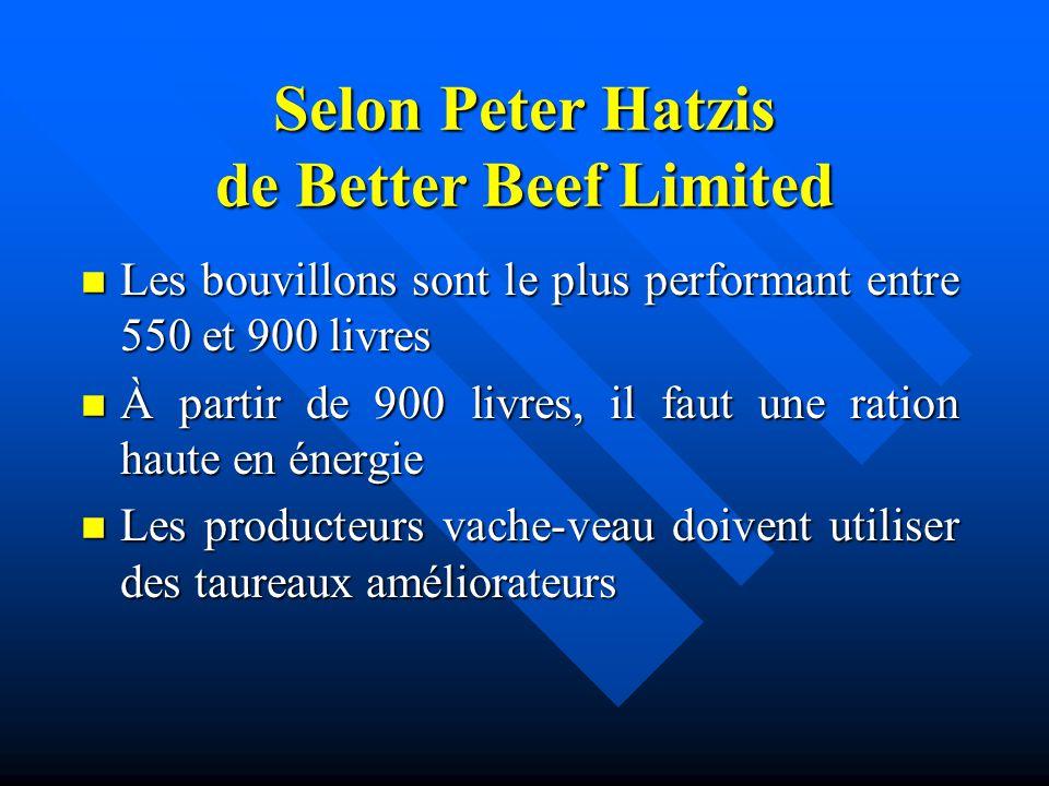 Selon Peter Hatzis de Better Beef Limited n Les bouvillons sont le plus performant entre 550 et 900 livres n À partir de 900 livres, il faut une ratio