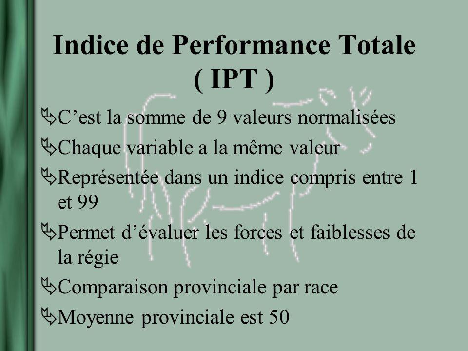 Indice de Performance Totale ( IPT ) Cest la somme de 9 valeurs normalisées Chaque variable a la même valeur Représentée dans un indice compris entre 1 et 99 Permet dévaluer les forces et faiblesses de la régie Comparaison provinciale par race Moyenne provinciale est 50
