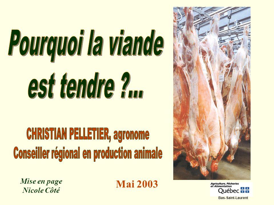 Mise en page Nicole Côté Mai 2003 Bas-Saint-Laurent