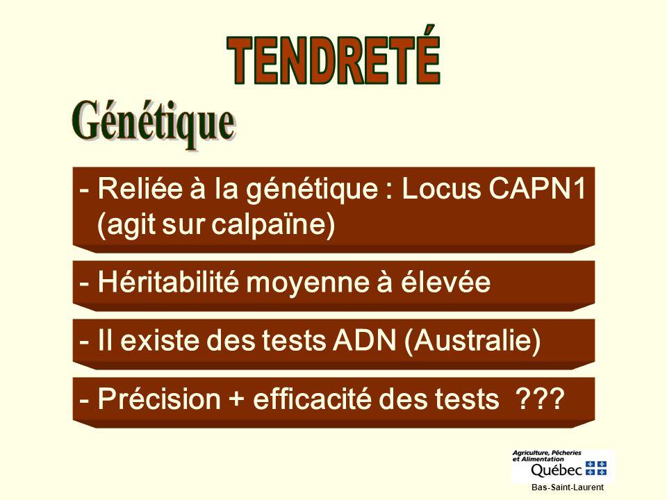 - Reliée à la génétique : Locus CAPN1 (agit sur calpaïne) - Héritabilité moyenne à élevée - Il existe des tests ADN (Australie) - Précision + efficaci