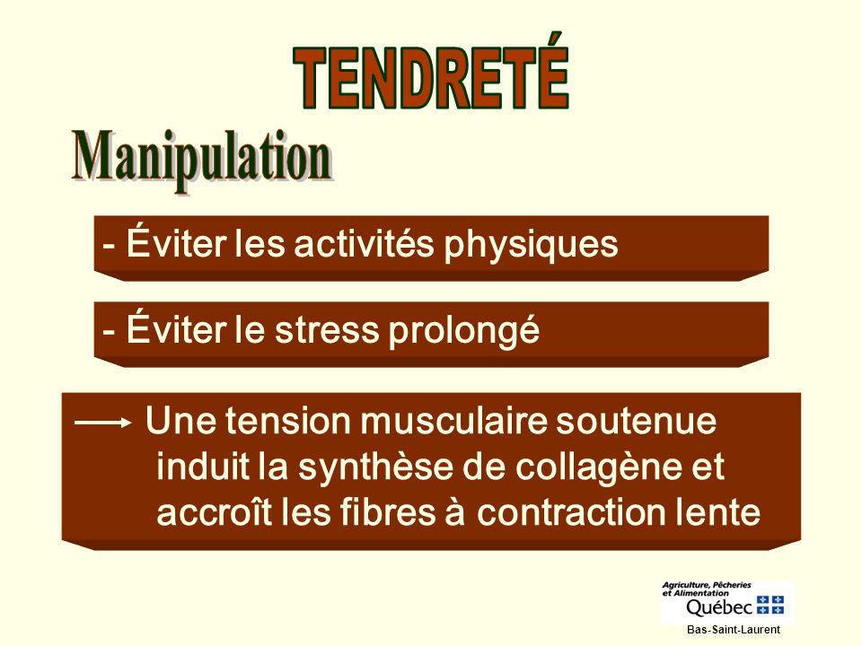 - Éviter les activités physiques - Éviter le stress prolongé Une tension musculaire soutenue induit la synthèse de collagène et accroît les fibres à c
