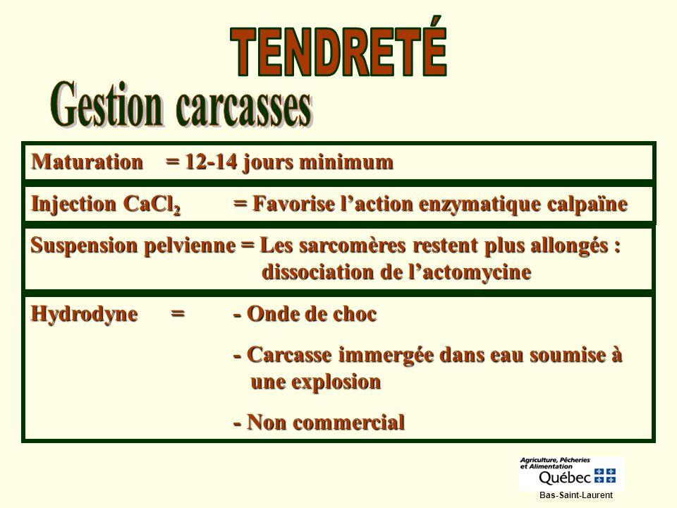 Injection CaCl 2 = Favorise laction enzymatique calpaïne Hydrodyne =- Onde de choc - Carcasse immergée dans eau soumise à une explosion - Non commerci