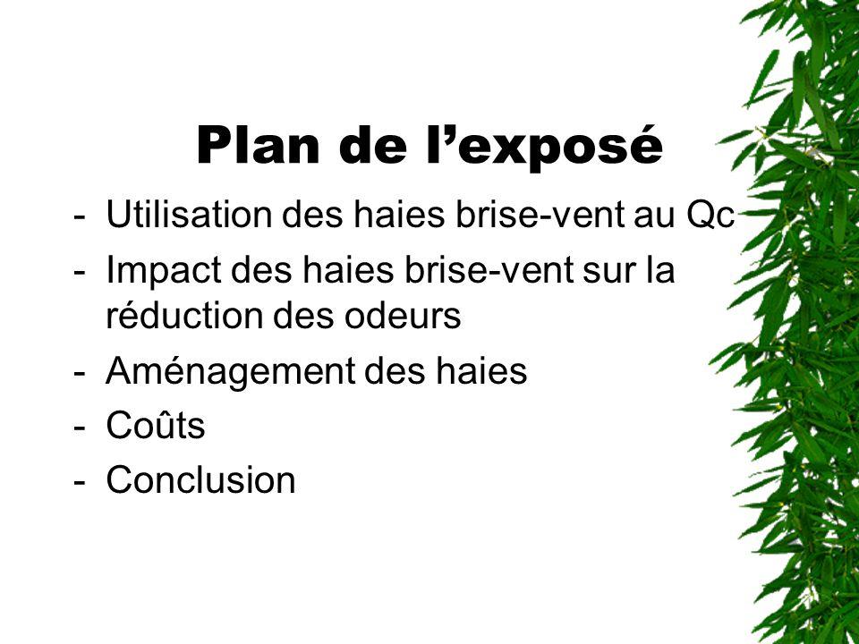 Plan de lexposé -Utilisation des haies brise-vent au Qc -Impact des haies brise-vent sur la réduction des odeurs -Aménagement des haies -Coûts -Conclusion