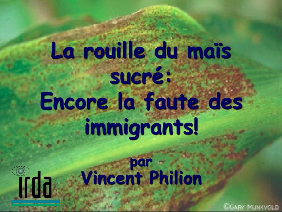 La rouille du maïs sucré: Encore la faute des immigrants! par Vincent Philion