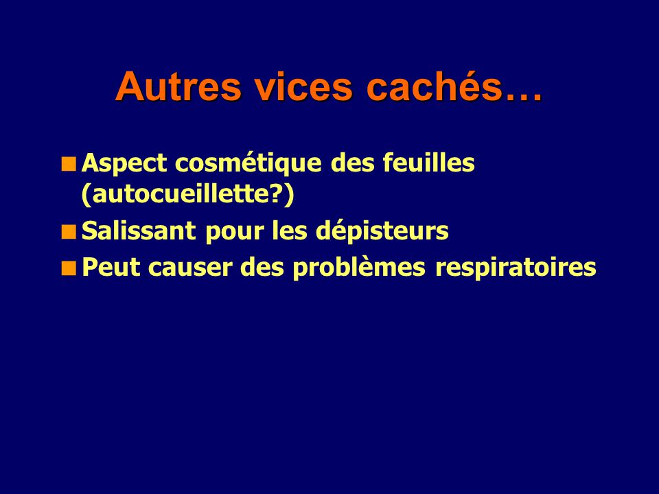 Autres vices cachés… Aspect cosmétique des feuilles (autocueillette?) Salissant pour les dépisteurs Peut causer des problèmes respiratoires