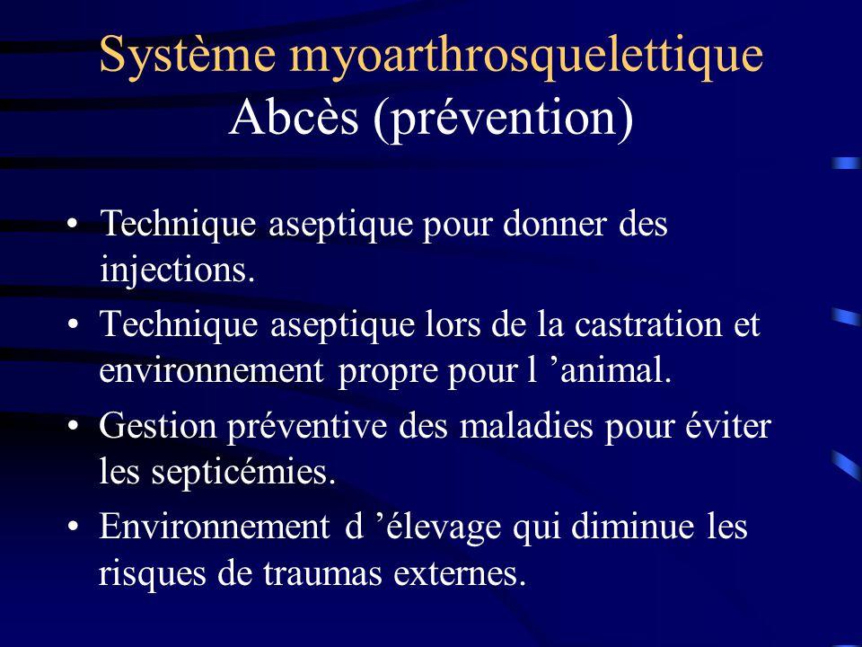 Système myoarthrosquelettique Abcès (prévention) Technique aseptique lors de la castration et environnement propre pour l animal. Gestion préventive d
