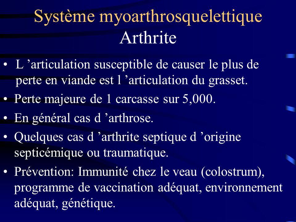 Système myoarthrosquelettique Arthrite Perte majeure de 1 carcasse sur 5,000. En général cas d arthrose. Quelques cas d arthrite septique d origine se