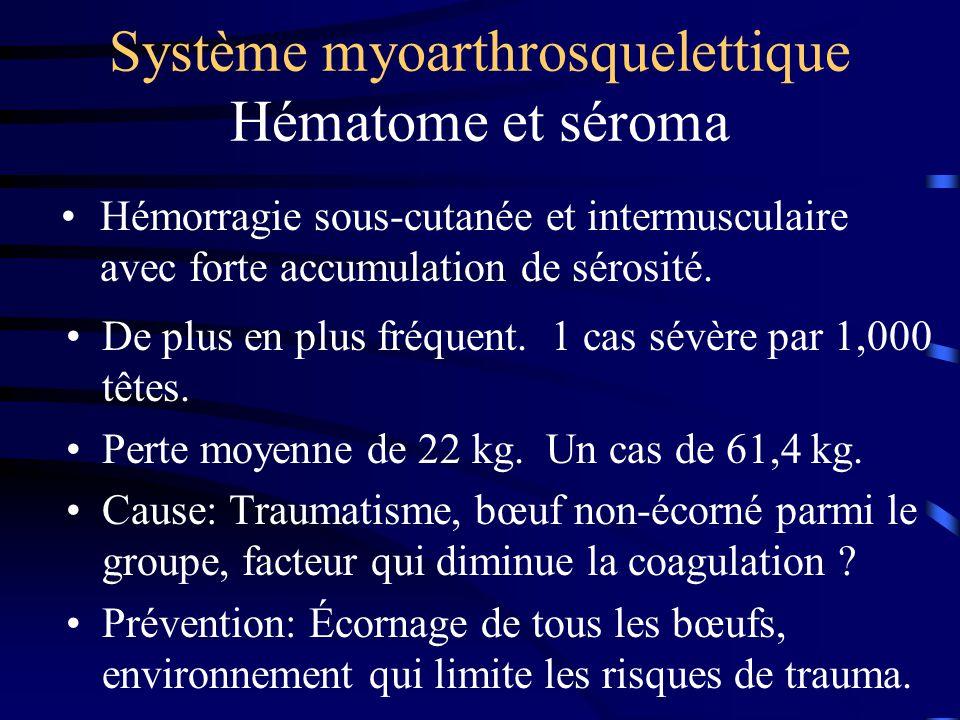 Système myoarthrosquelettique Hématome et séroma De plus en plus fréquent. 1 cas sévère par 1,000 têtes. Perte moyenne de 22 kg. Un cas de 61,4 kg. Ca