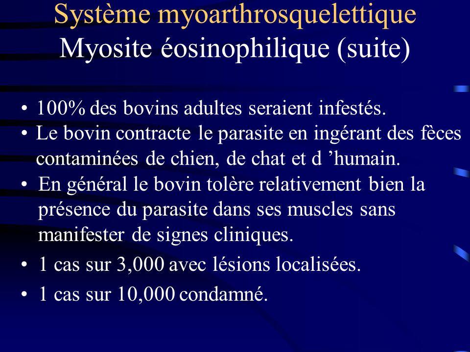 Système myoarthrosquelettique Myosite éosinophilique (suite) En général le bovin tolère relativement bien la présence du parasite dans ses muscles san