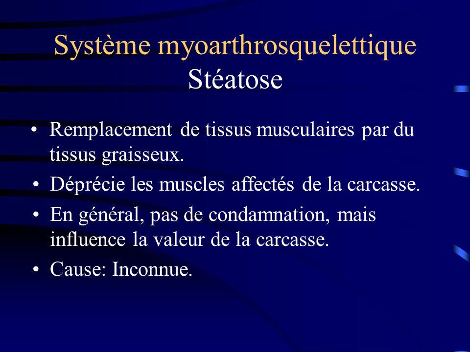 Système myoarthrosquelettique Stéatose Déprécie les muscles affectés de la carcasse. En général, pas de condamnation, mais influence la valeur de la c