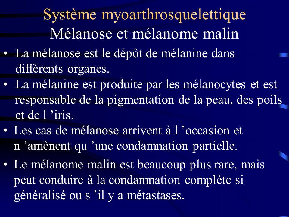 Système myoarthrosquelettique Mélanose et mélanome malin Les cas de mélanose arrivent à l occasion et n amènent qu une condamnation partielle. Le méla