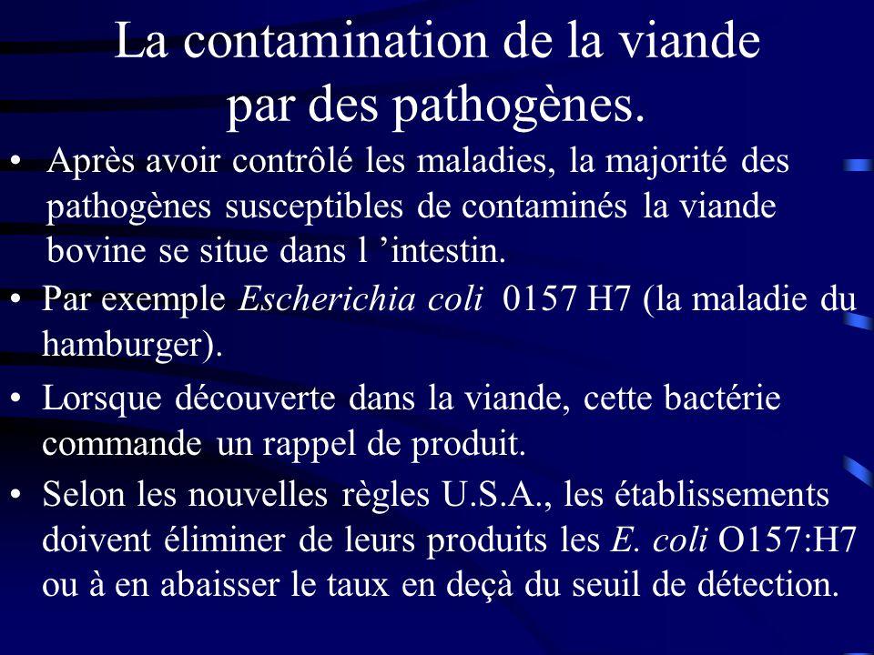 La contamination de la viande par des pathogènes. Par exemple Escherichia coli 0157 H7 (la maladie du hamburger). Lorsque découverte dans la viande, c
