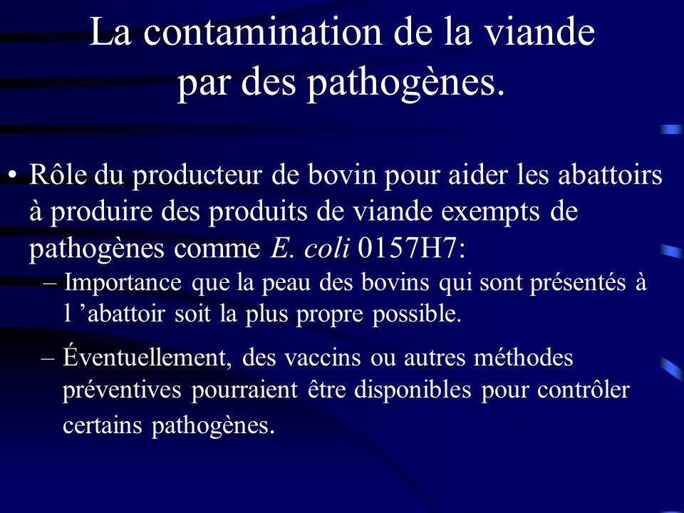 La contamination de la viande par des pathogènes. –Éventuellement, des vaccins ou autres méthodes préventives pourraient être disponibles pour contrôl