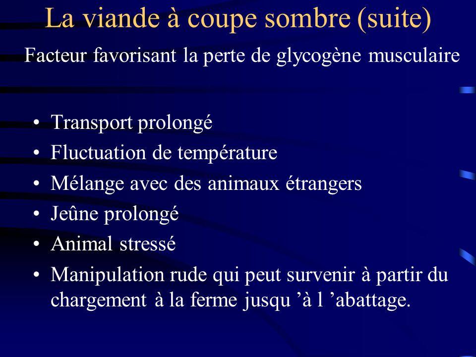 La viande à coupe sombre (suite) Facteur favorisant la perte de glycogène musculaire Transport prolongé Fluctuation de température Mélange avec des an
