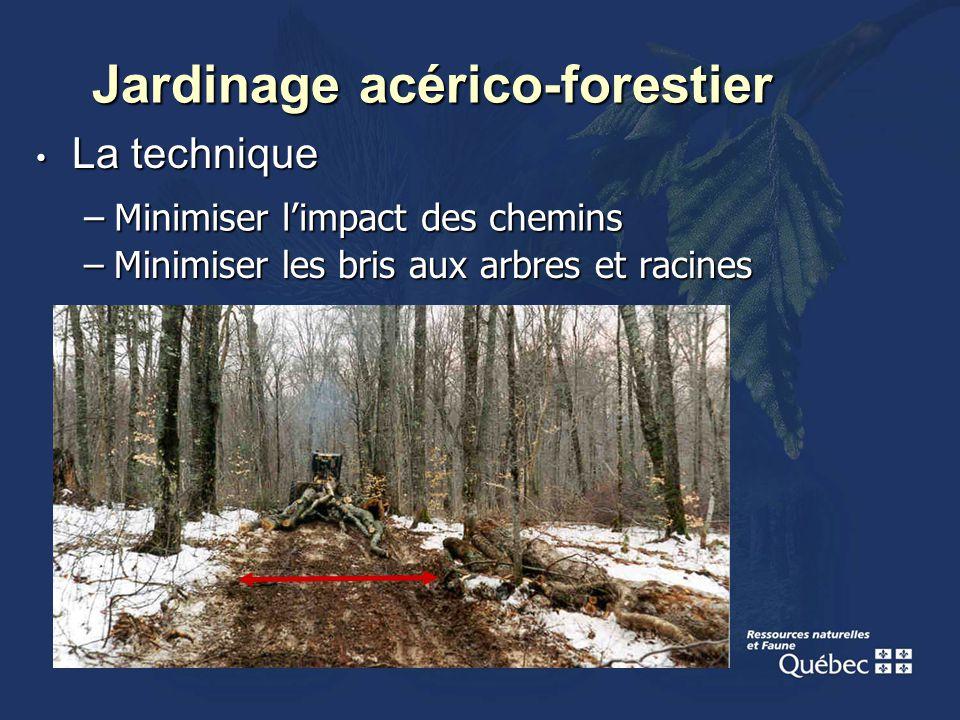 La technique La technique –Minimiser les bris aux arbres et racines Jardinage acérico-forestier –Minimiser limpact des chemins