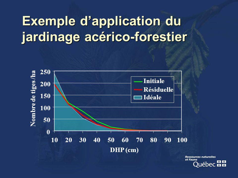 Exemple dapplication du jardinage acérico-forestier 0 50 100 150 200 250 102030405060708090100 DHP (cm) Nombre de tiges /ha Idéale Initiale Résiduelle