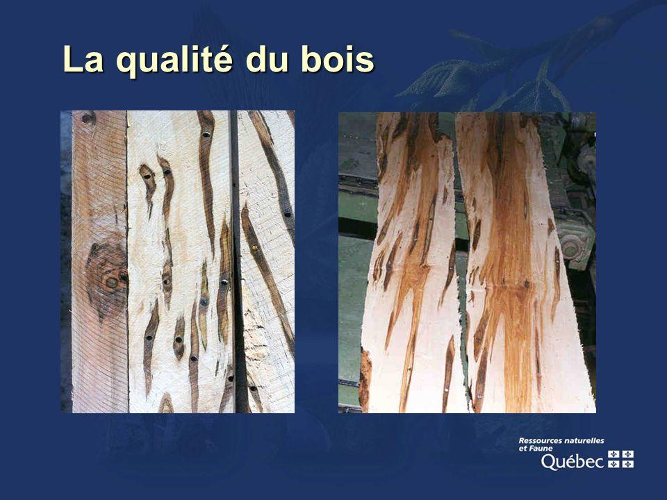 La qualité du bois