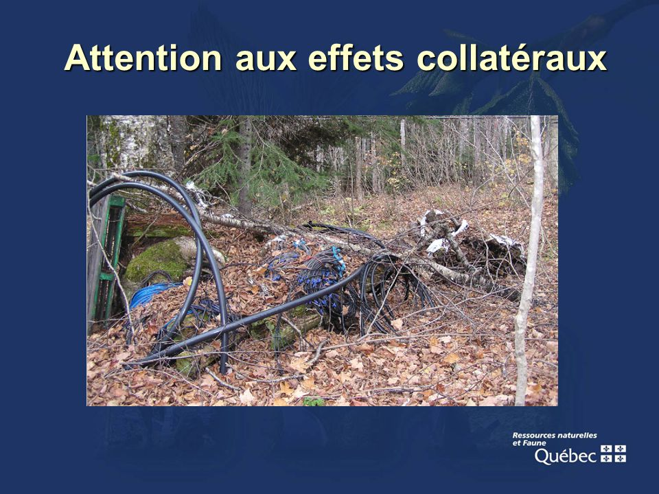 Attention aux effets collatéraux