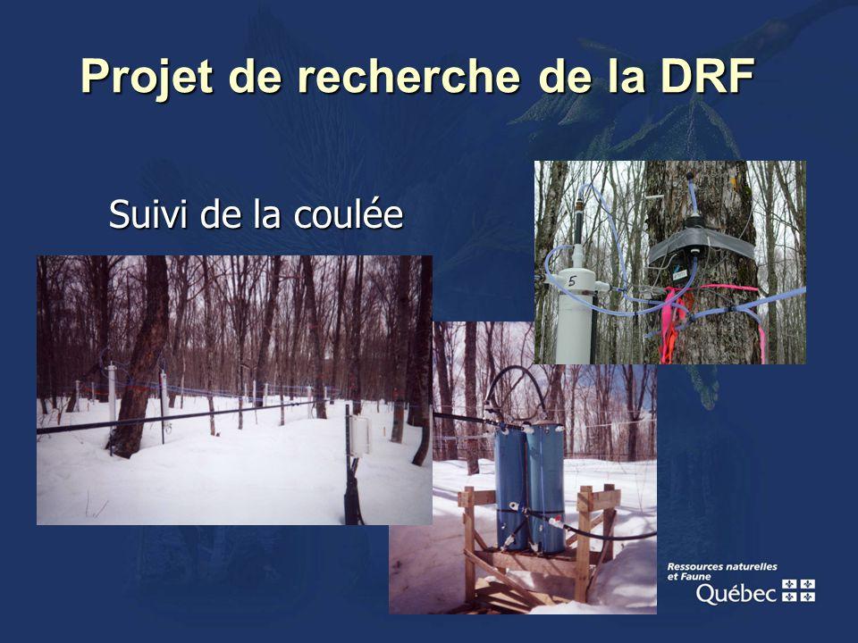 Projet de recherche de la DRF Suivi de la coulée