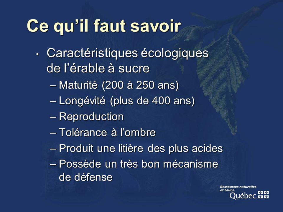 Ce quil faut savoir Caractéristiques écologiques de lérable à sucre Caractéristiques écologiques de lérable à sucre –Maturité (200 à 250 ans) –Longévi