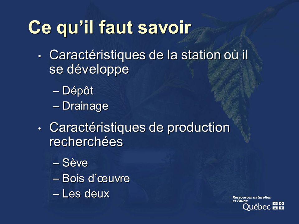 Ce quil faut savoir Caractéristiques de la station où il se développe Caractéristiques de la station où il se développe –Dépôt –Drainage Caractéristiq