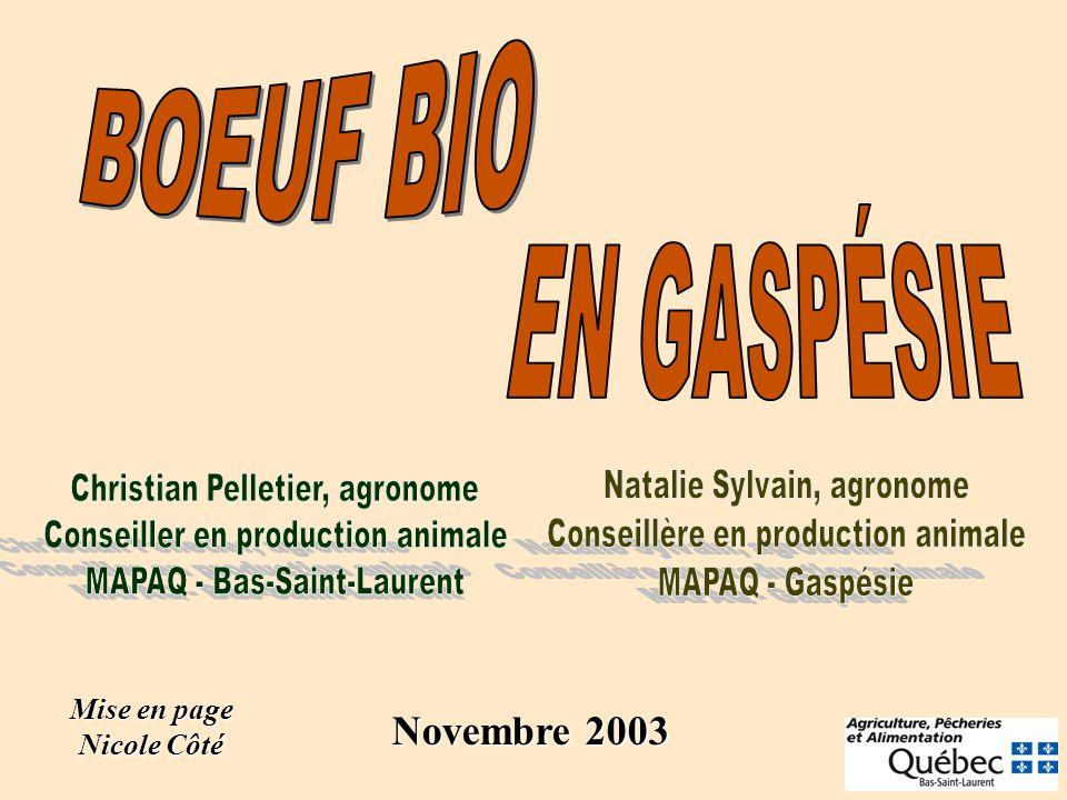 Mise en page Nicole Côté Novembre 2003