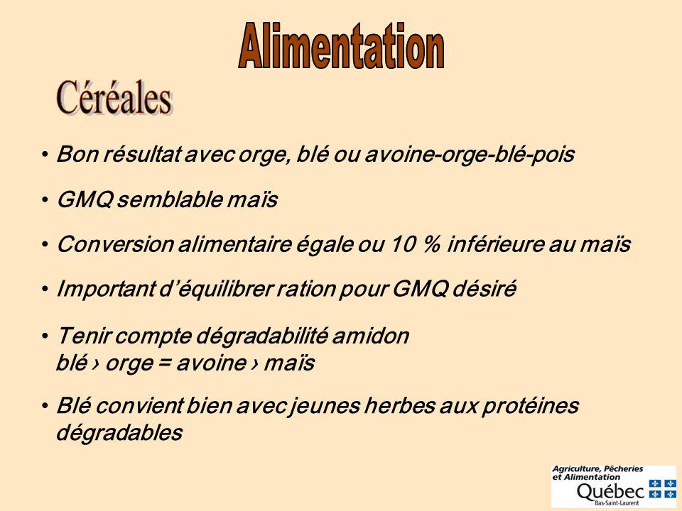 Bon résultat avec orge, blé ou avoine-orge-blé-pois GMQ semblable maïs Conversion alimentaire égale ou 10 % inférieure au maïs Important déquilibrer r
