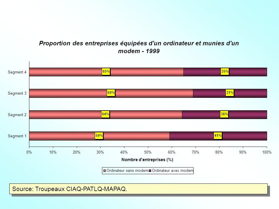 Proportion des entreprises équipées d un ordinateur et munies d un modem - 1999 59% 64% 69% 65% 41% 36% 31% 35% 0%10%20%30%40%50%60%70%80%90%100% Segment 1 Segment 2 Segment 3 Segment 4 Nombre d entreprises (%) Ordinateur sans modemOrdinateur avec modem Source: Troupeaux CIAQ-PATLQ-MAPAQ.
